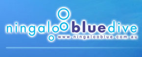Ningaloo Blue Dive - Lennox Head Accommodation