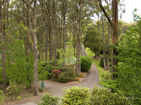 Mount Lofty Botanic Garden - Lennox Head Accommodation